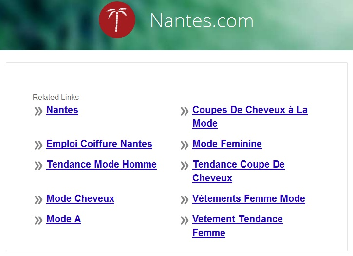 screenshot de nantes.com